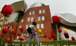 在澳洲申请MBA -Weatherhead-School-of-Management
